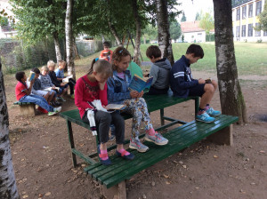 4M Reading Under The Trees 6